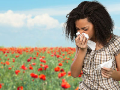 The Relationship between Pollen, Hay Fever and Your HVAC System